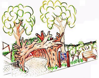Zoo ag projekt marderhund gehege tierpark bielefeld 1998 for Rankpflanzen innenraum