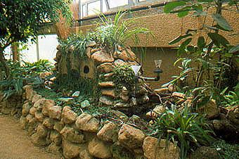 zoo ag exkursion zoo krefeld 1999. Black Bedroom Furniture Sets. Home Design Ideas